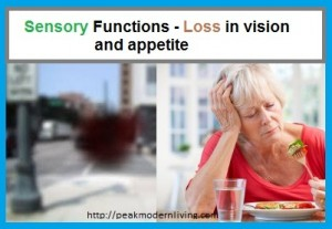 Symptoms of zinc defiency include loss of Vision and apetite